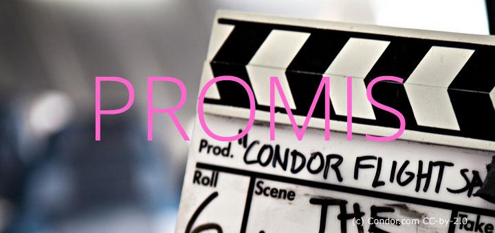 ewm_001_promis